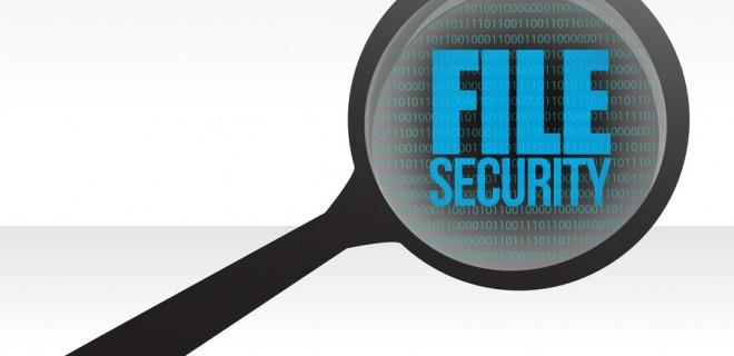 PDF File Security
